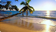 4 or 7 night Caribbean cruise